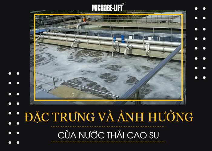 Đặc trưng và ảnh hưởng của nước thải cao su