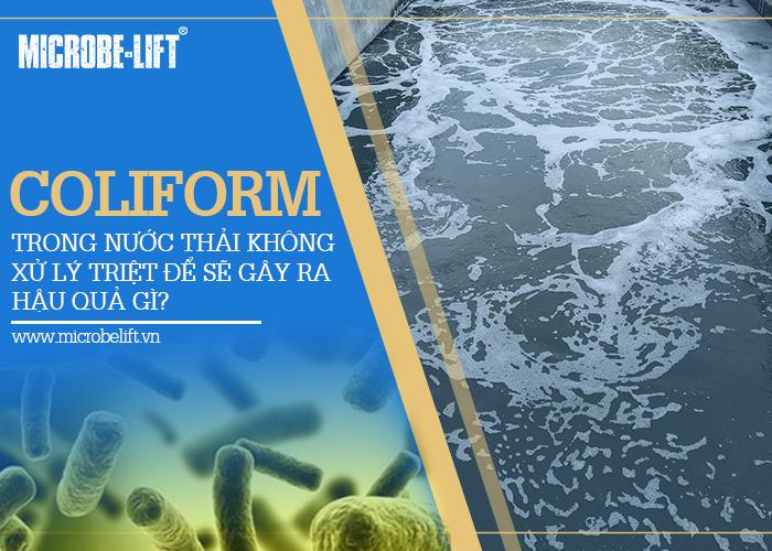 1/ Coliform trong nước thải không xử lý triệt để sẽ gây ra hậu quả gì?