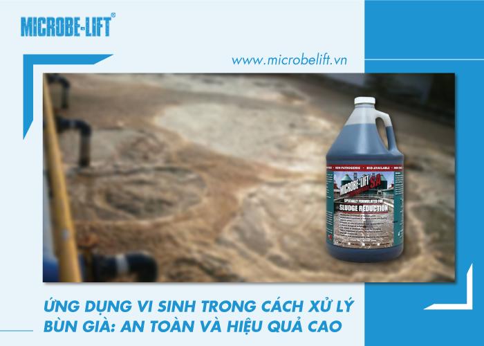 Ứng dụng vi sinh trong cách xử lý bùn già: An toàn và hiệu quả cao