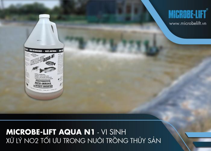 Microbe-Lift AQUA N1 - Vi sinh xử lý NO2 tối ưu trong nuôi trồng thủy sản
