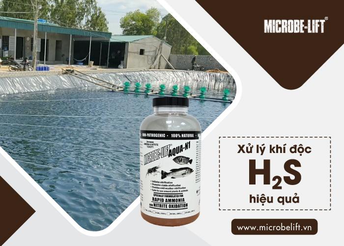 Xử lý khí độc H2S hiệu quả