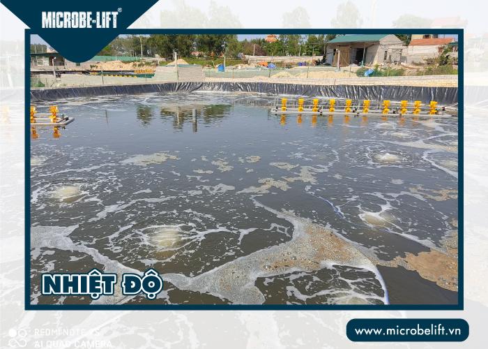 Nhiệt độ ảnh hưởng đến chất lượng nước ao nuôi tôm