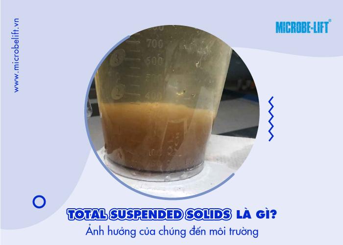 ảnh hưởng Suspended solids đến môi trường