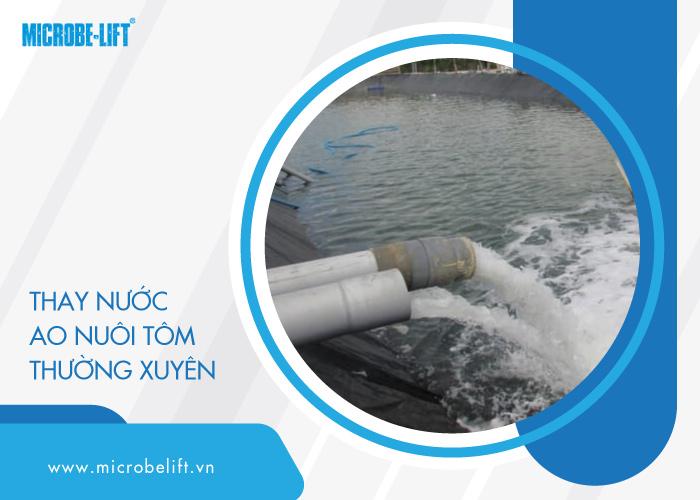 quản lý chất lượng nước ao nuôi tôm